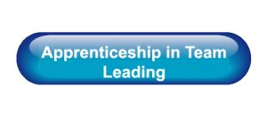 Apprenticeship in Team