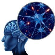 multiple-sclerosis-awareness-training-colour